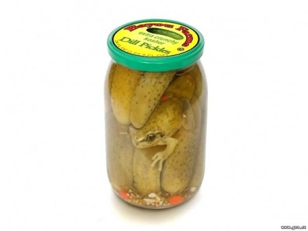 Animal Funny Pictures French pickles???