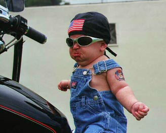 Car Funny Pictures Cool rider