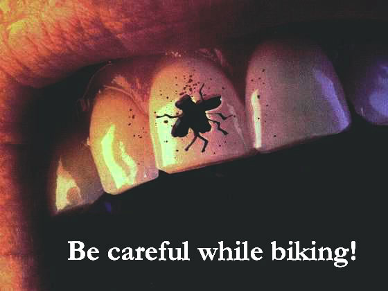 Clean Funny Pictures Be careful while biking!