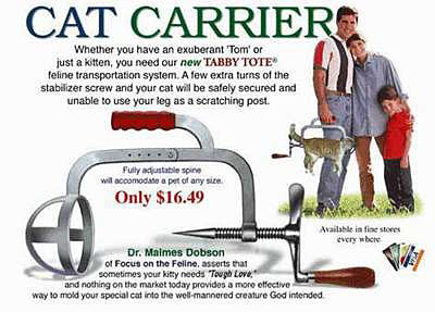 Cat Funny Pictures The Cat carrier