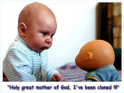 Clean Funny Pictures Holy great mother of God!