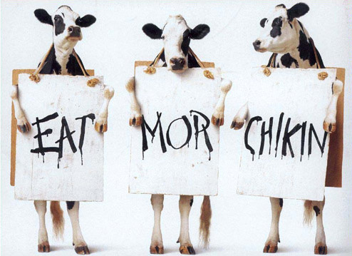 Animal Funny Pictures Eat mor chikin