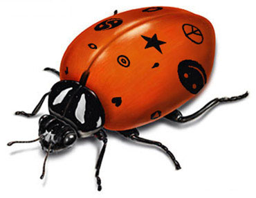 Clean Funny Pictures The cool ladybug