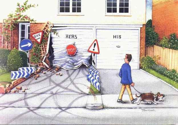 Cartoon Funny Pictures The hers and his garage