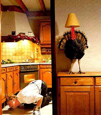 Facebook Funny Pictures Finding turkey
