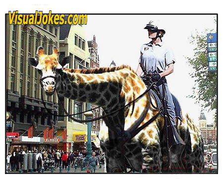 Animal Funny Pictures ZooCop